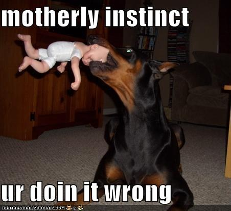 Motherly Instinct
